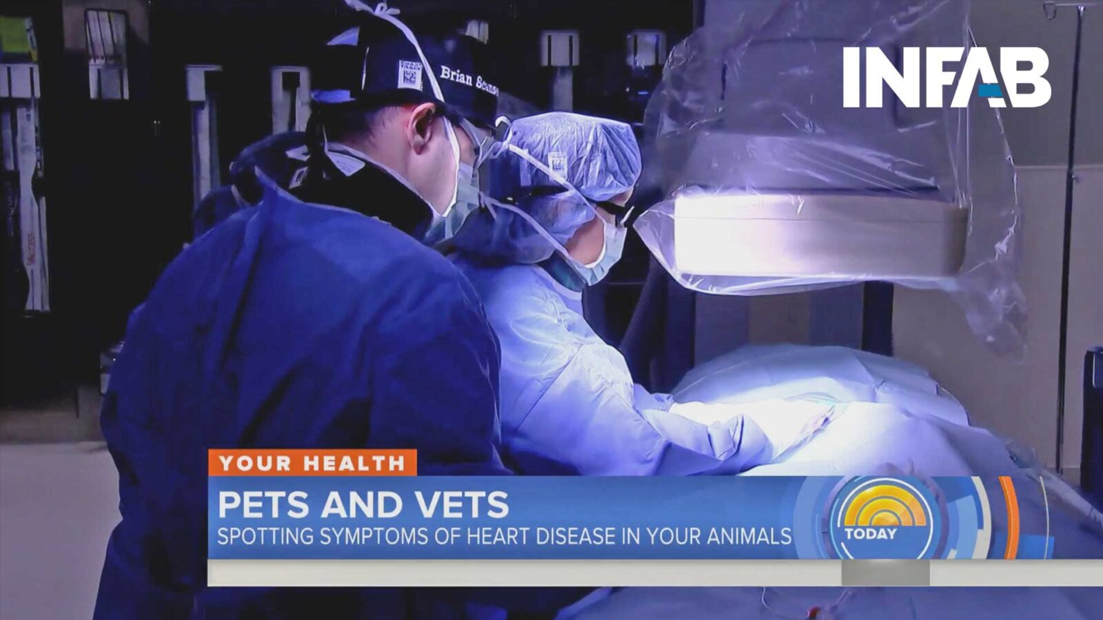 Vets Saving Dogs With Heart Disease Featured On TODAY Show With INFAB Protection